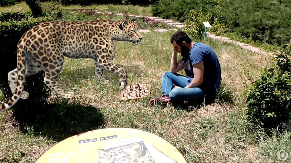 One user managed to sit down with the virtual leopard for a game of chess